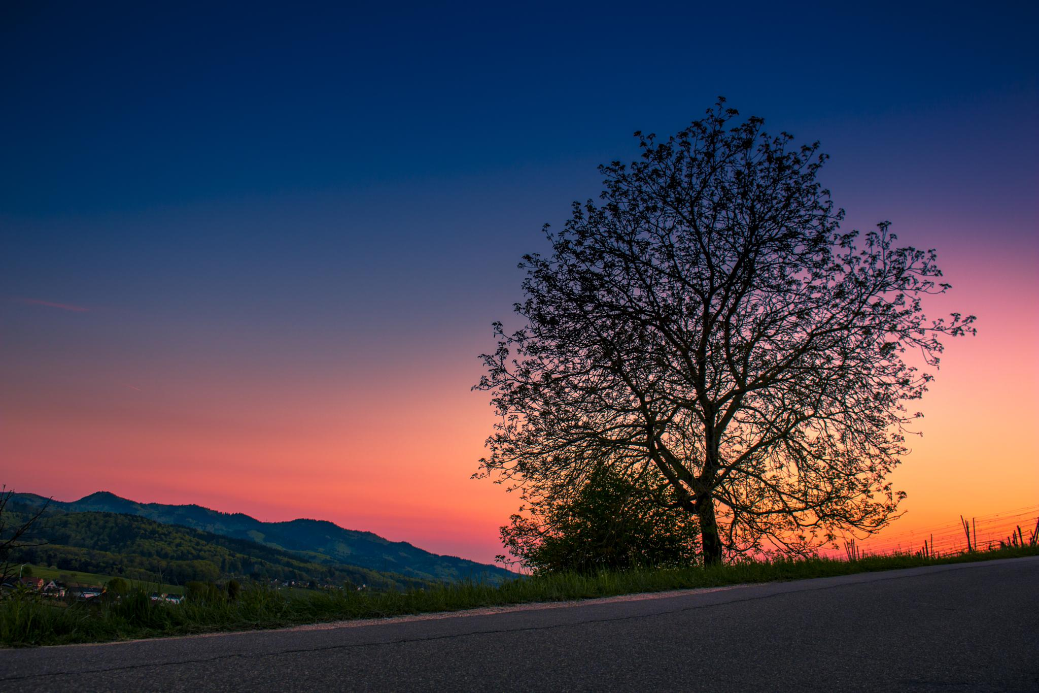 spring landscape  by John Palmer