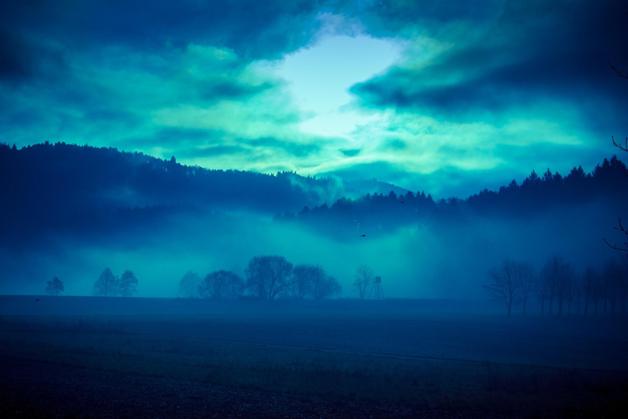 misty blue by John Palmer