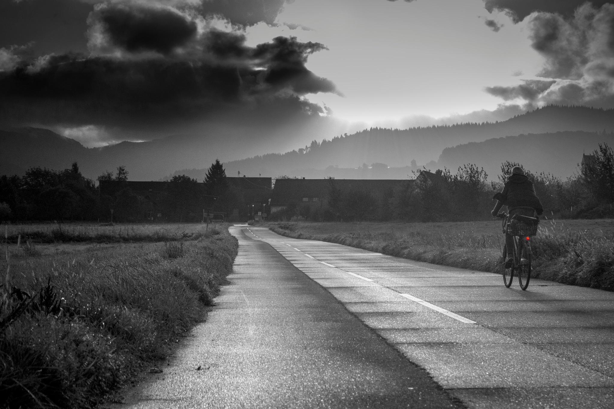 into the sunrise by John Palmer