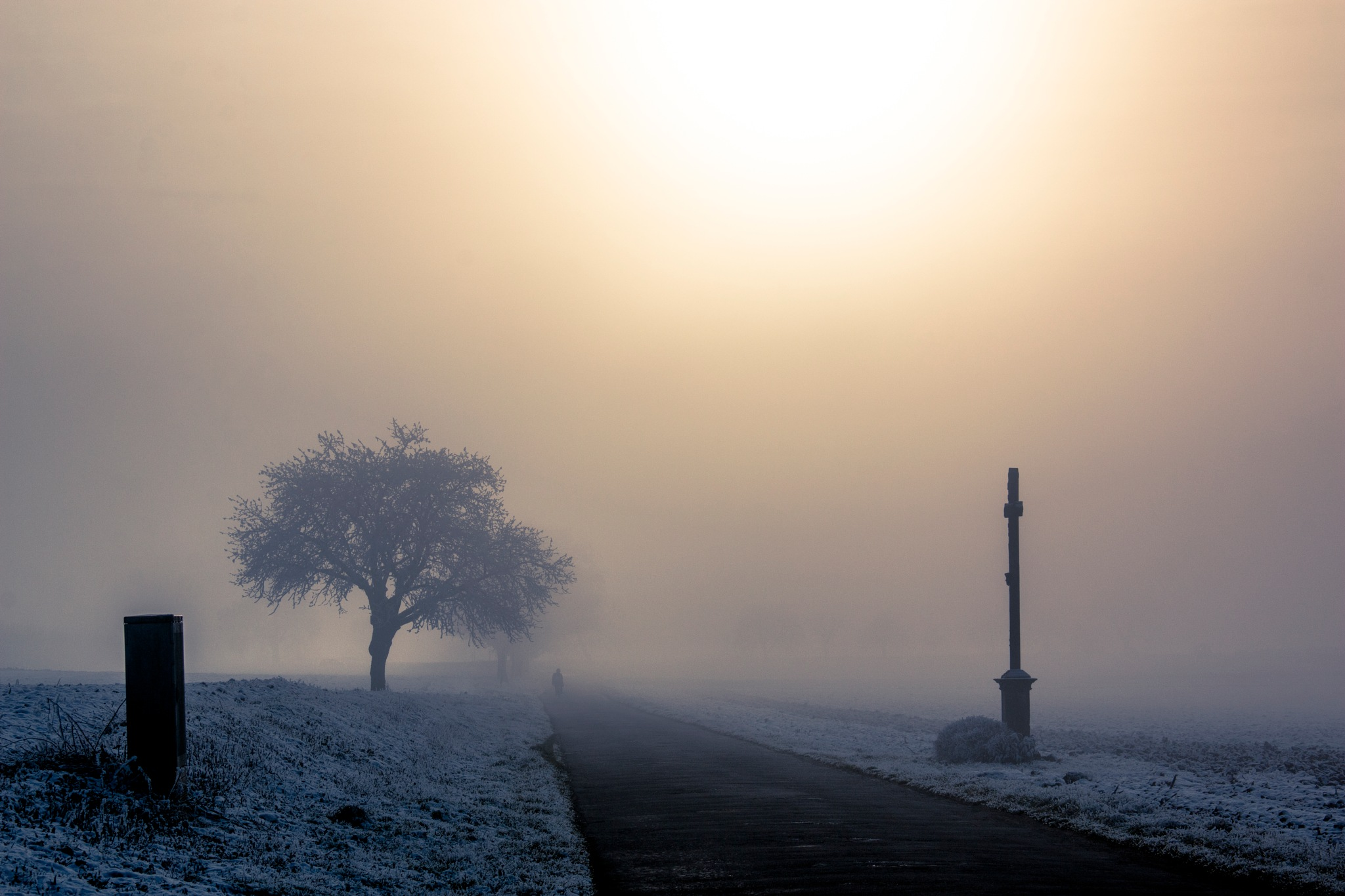 someone in the mist by John Palmer