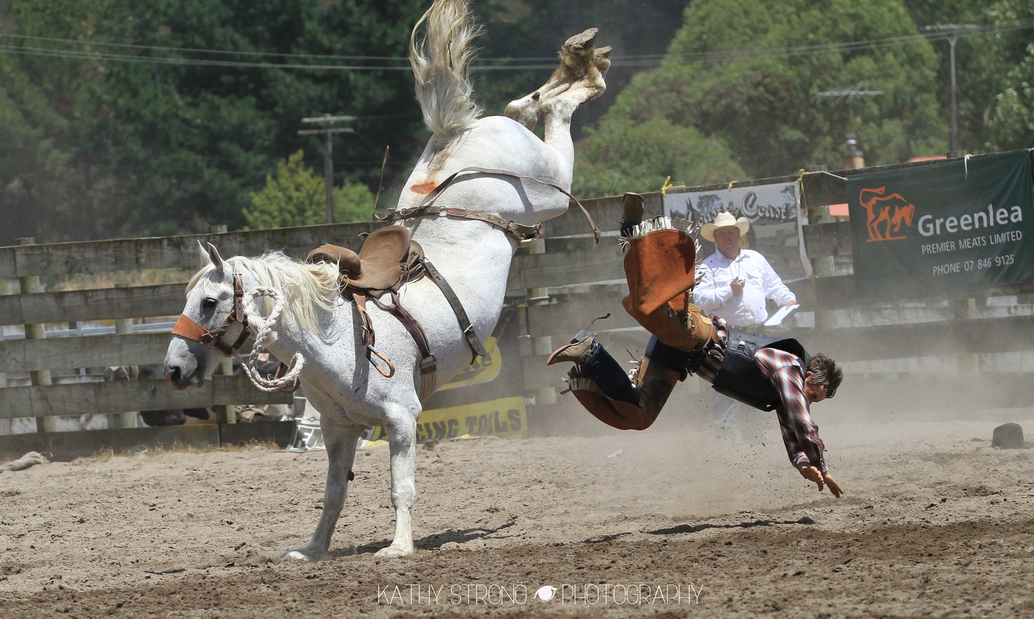 Bronc 1 by Kathy Strong