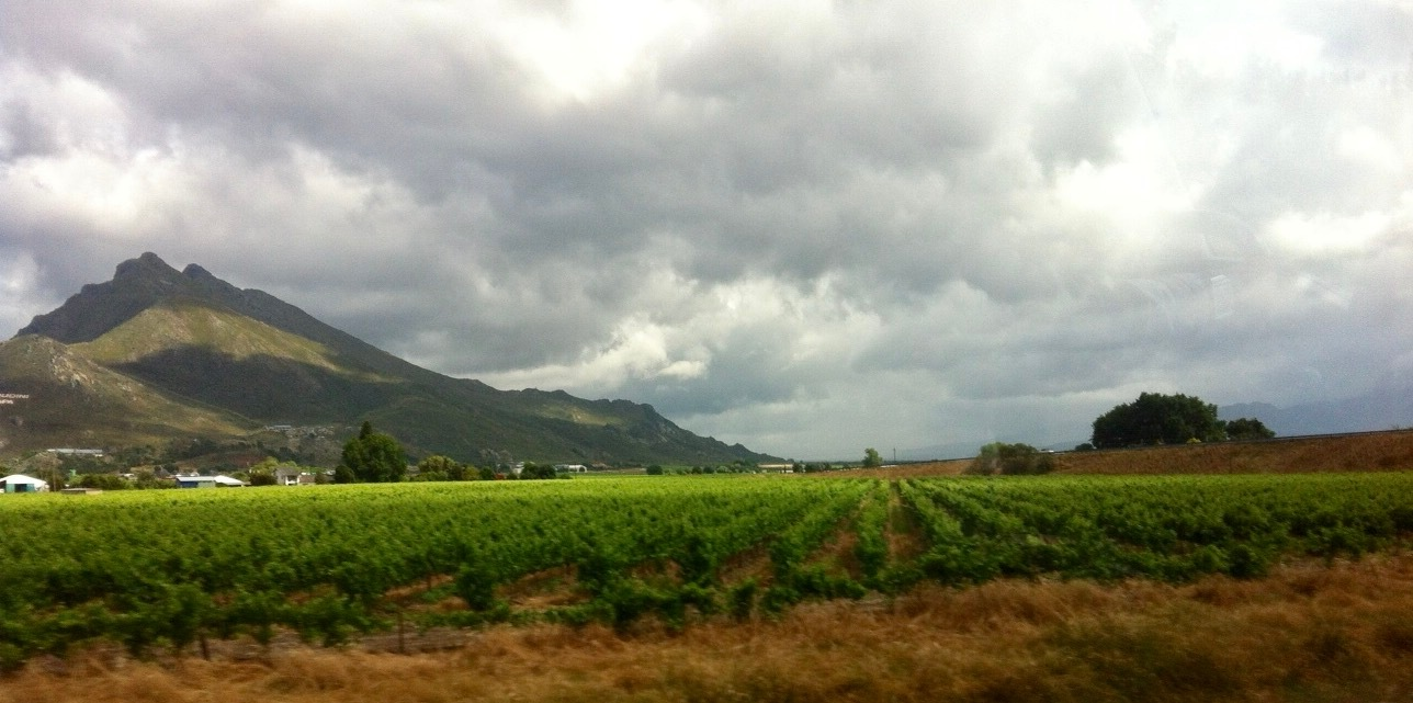 Cape Town.....the green beauty of Africa. by Ashraf Younis