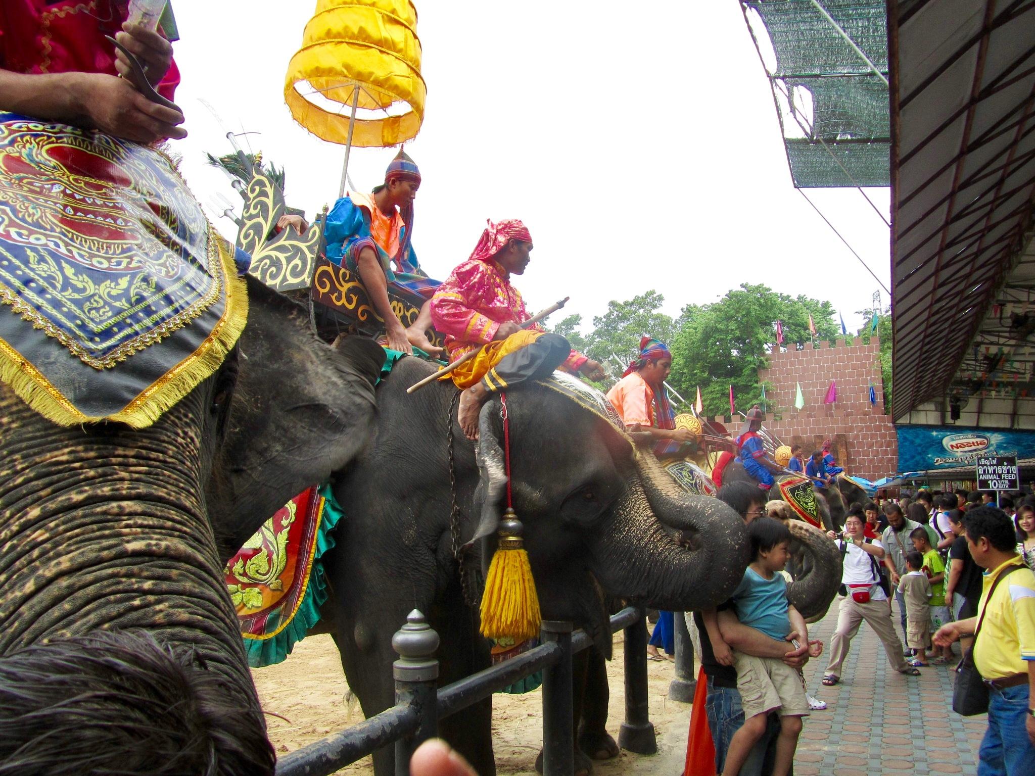 ELEPHANTS Show......Bangkok. by Ashraf Younis