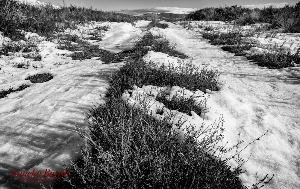 Down Snow Road by AnnekaBarrittphotographyNZ