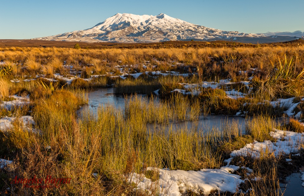 Frozen  Lakefront by AnnekaBarrittphotographyNZ
