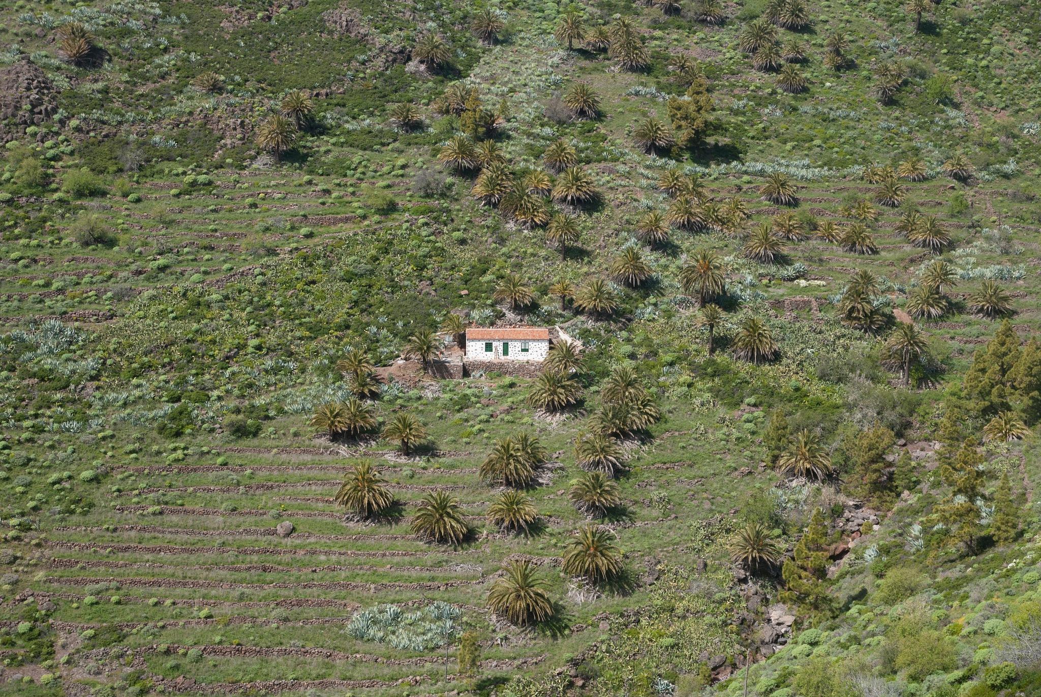 La Gomera by GWHMantel