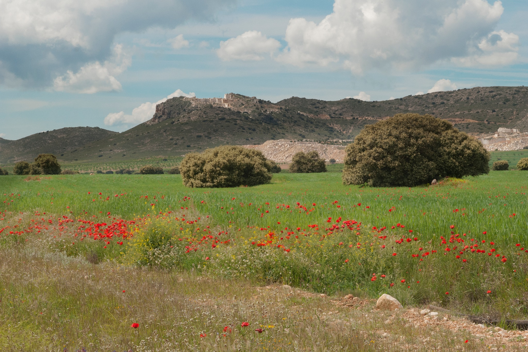 Andalucia by GWHMantel