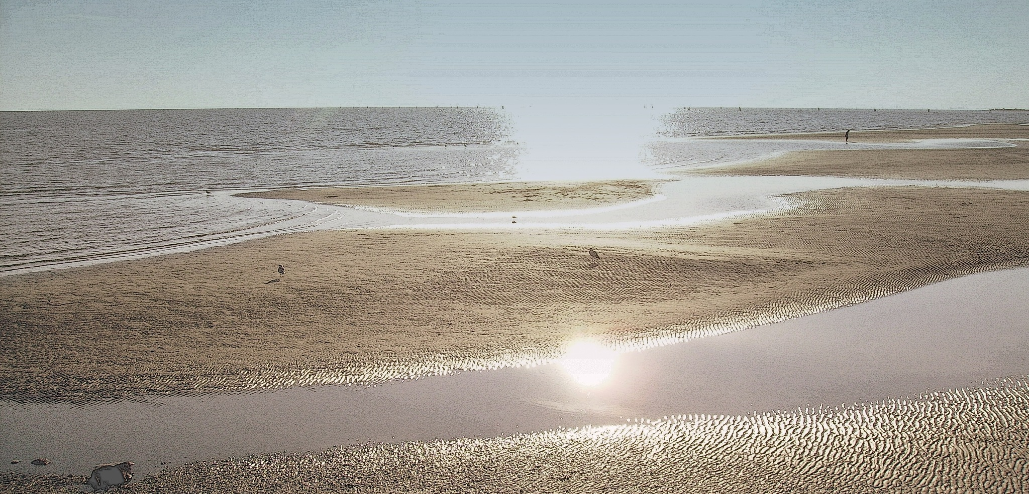stessa spiaggia, stesso mare by Adelaide