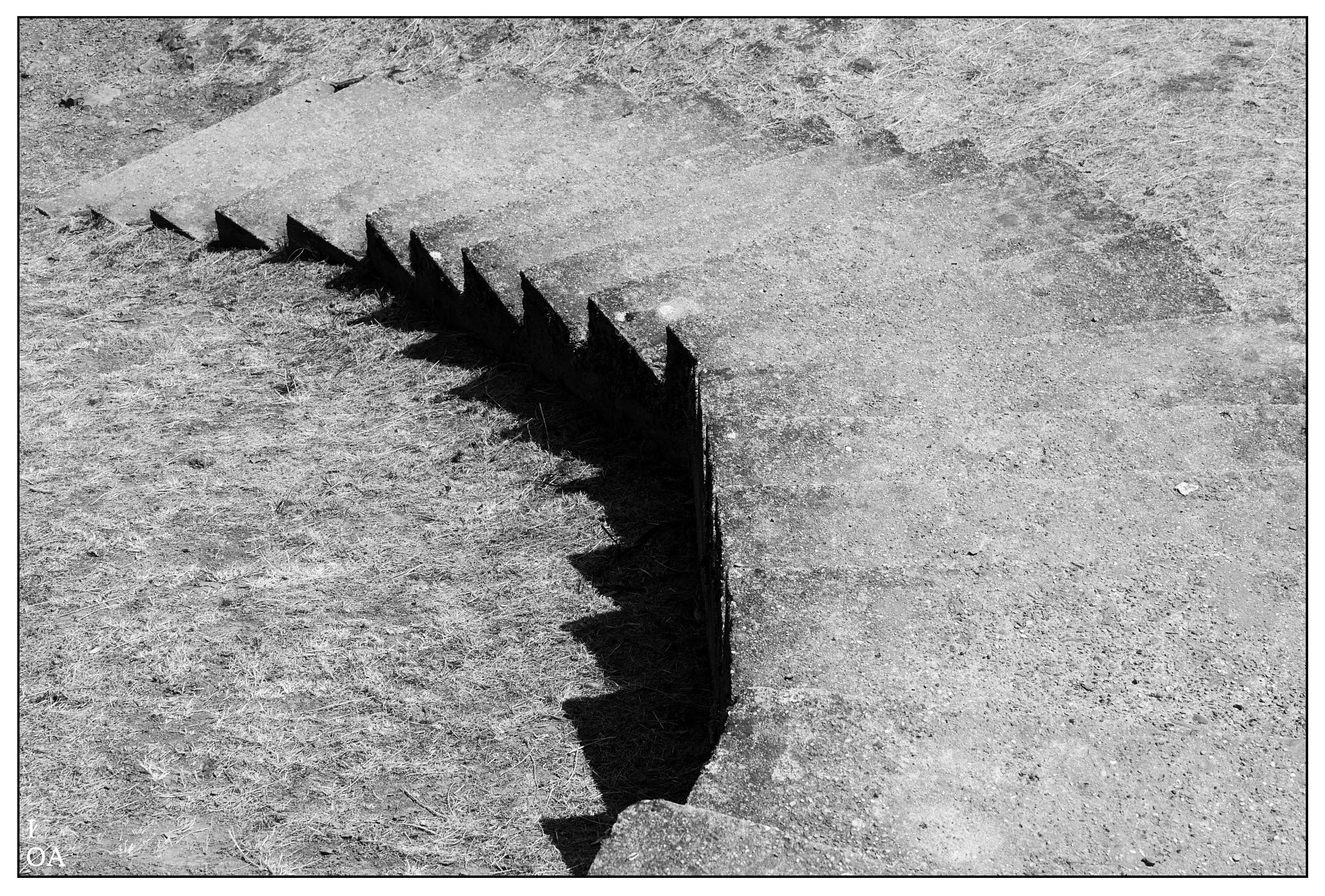 Shadowtail by imageofantwerp