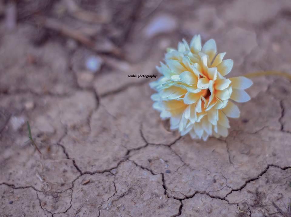 Untitled by Sou Hil