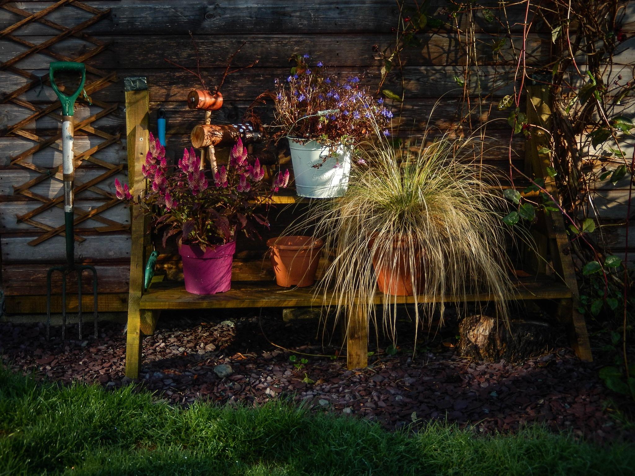 Gardeners Shelves by EdR