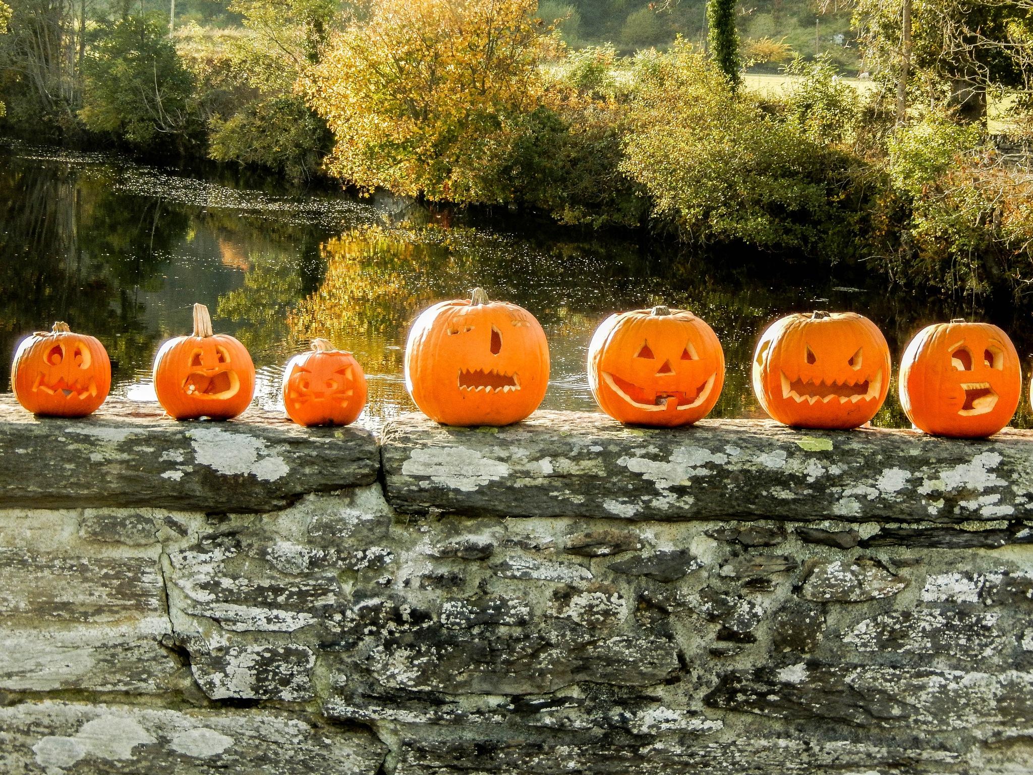 Halloween Bridge by EdR