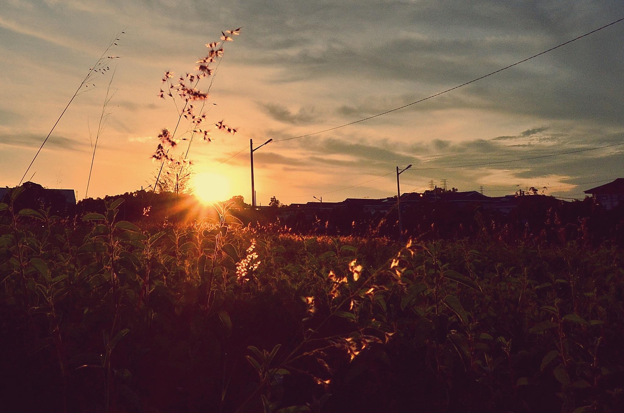 Sunrise by FarizMahmood
