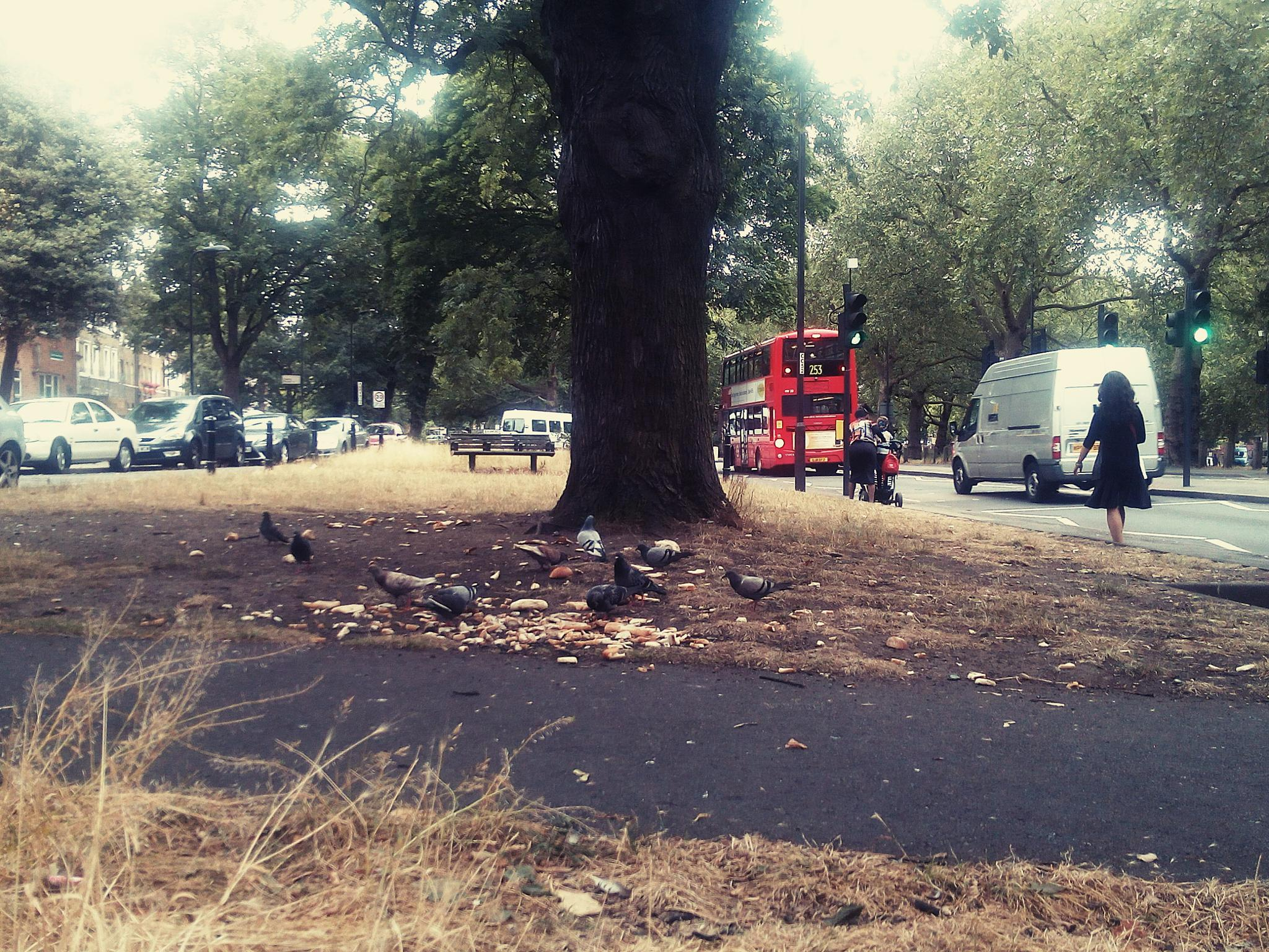 English Breakfast - Typical morning in London by Sima Janan