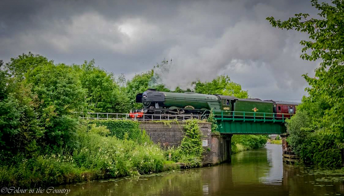 The Flying Scotsman  by Maddy McCarthy