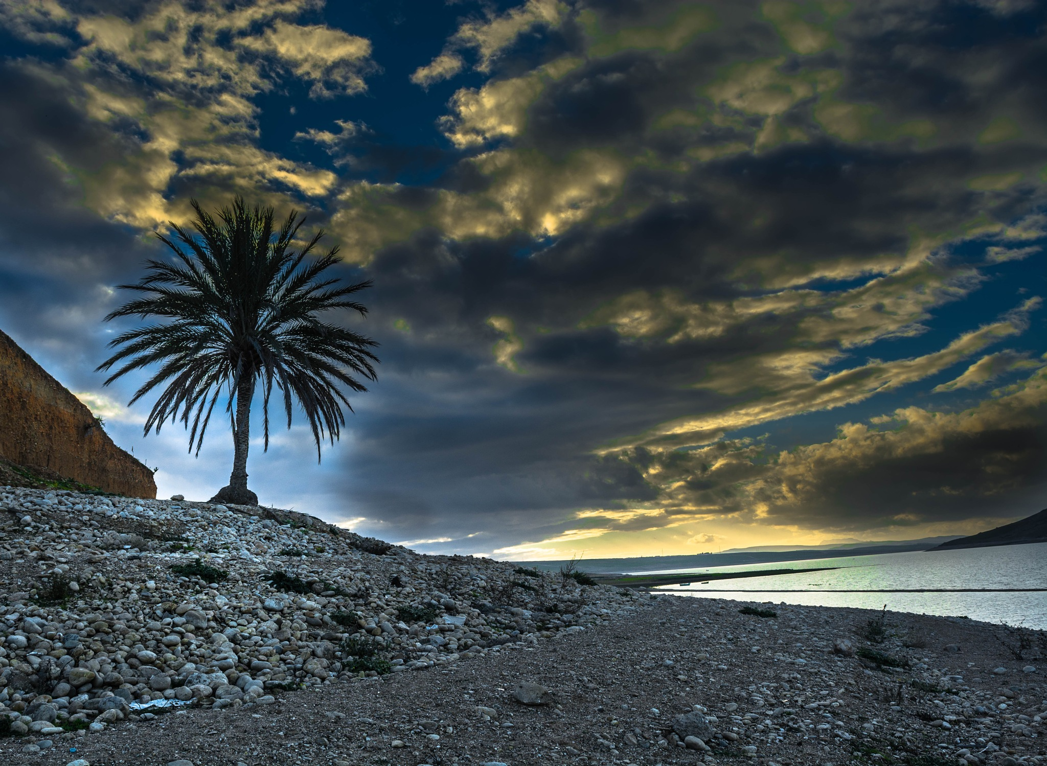 Th Light Palm by Saymon Kaii