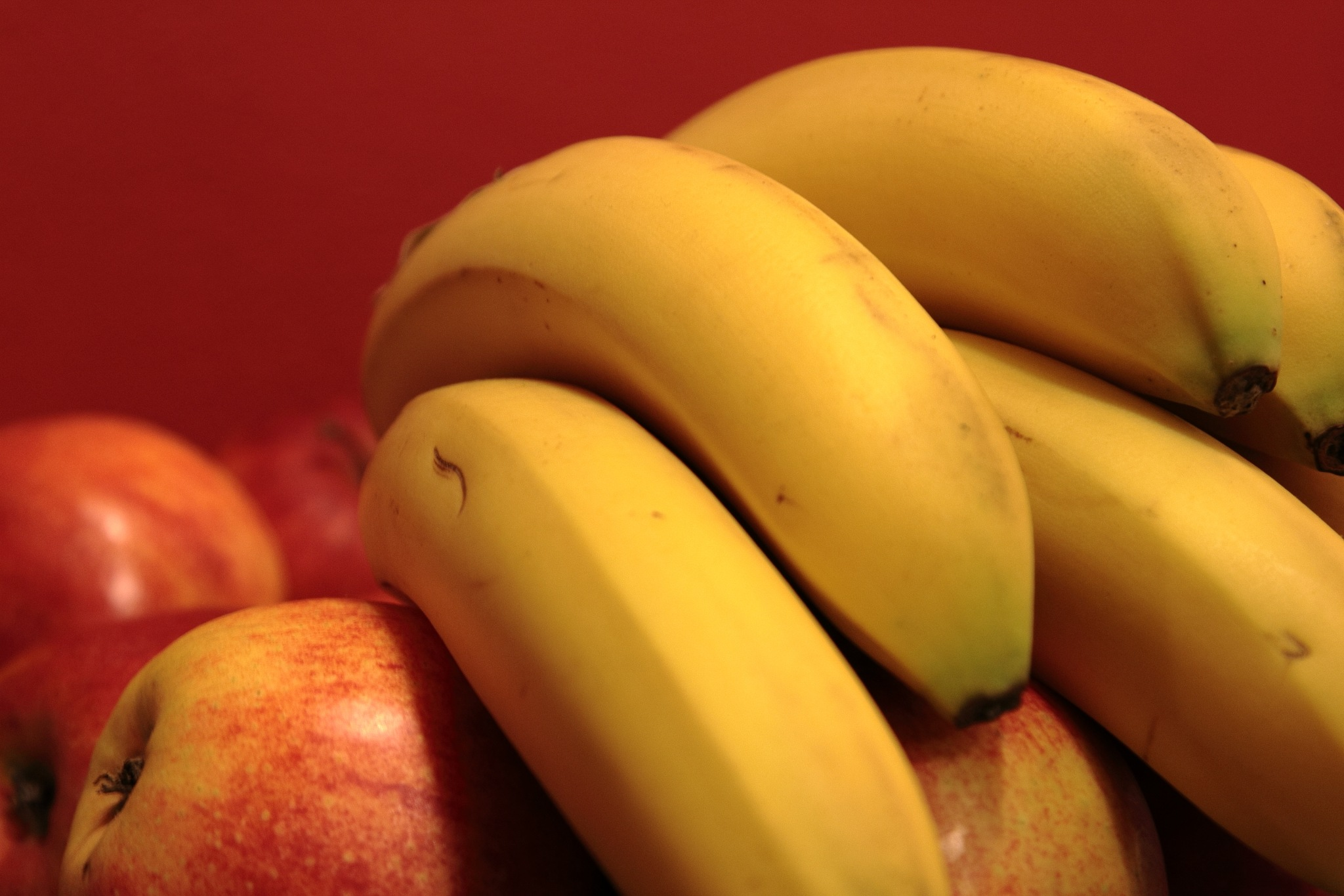 Bananas over apples in front of red wall - what a fruitful life by Thomas Lenz