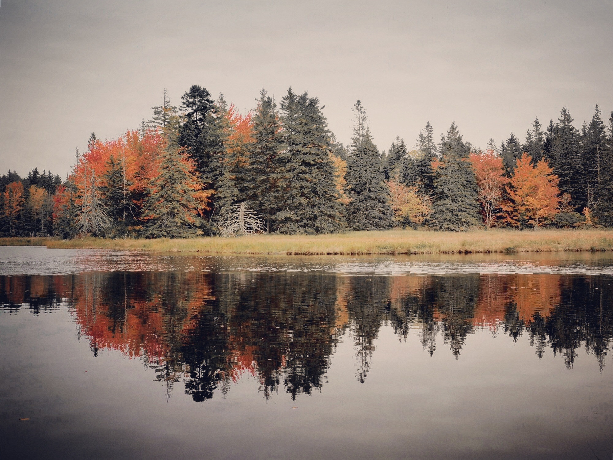 fall reflections by MeganHillPhotography