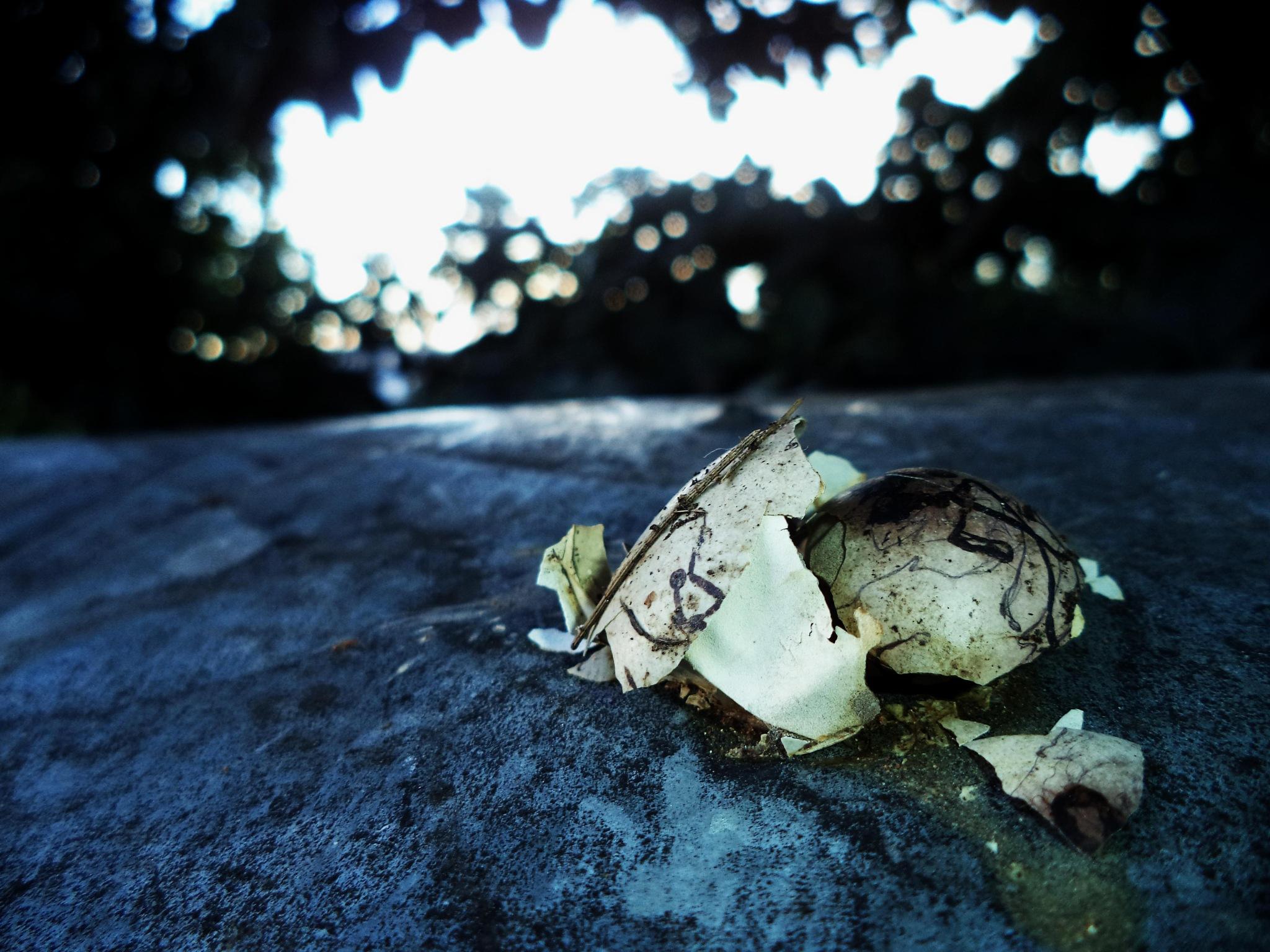 #dead  by PhotographyCC♧©