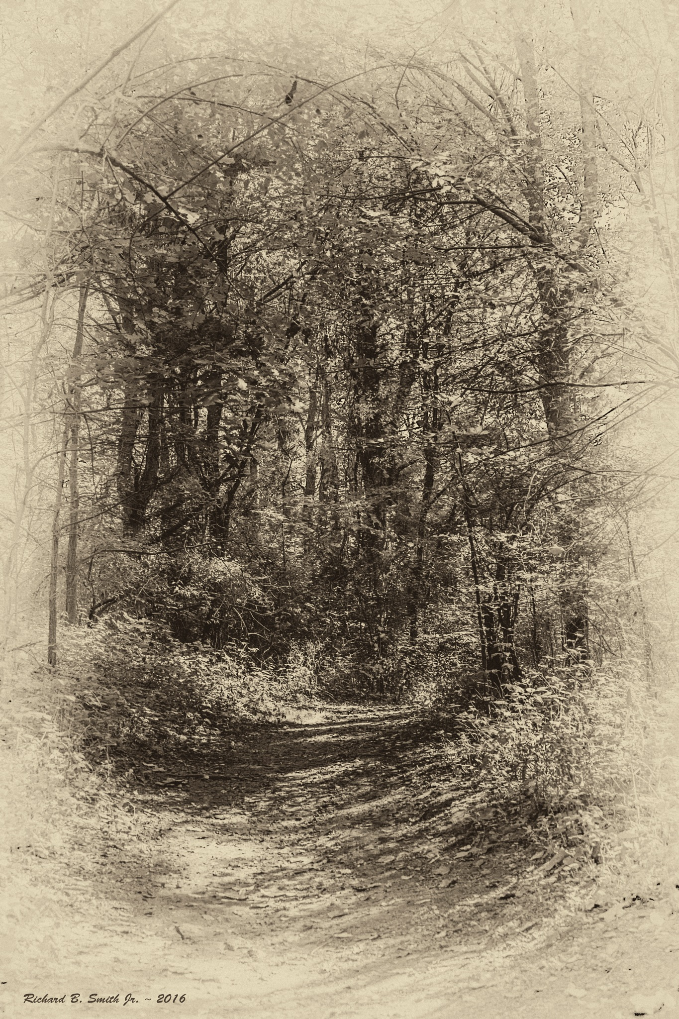 A Path Less Traveled by Richard B.  Smith Jr.