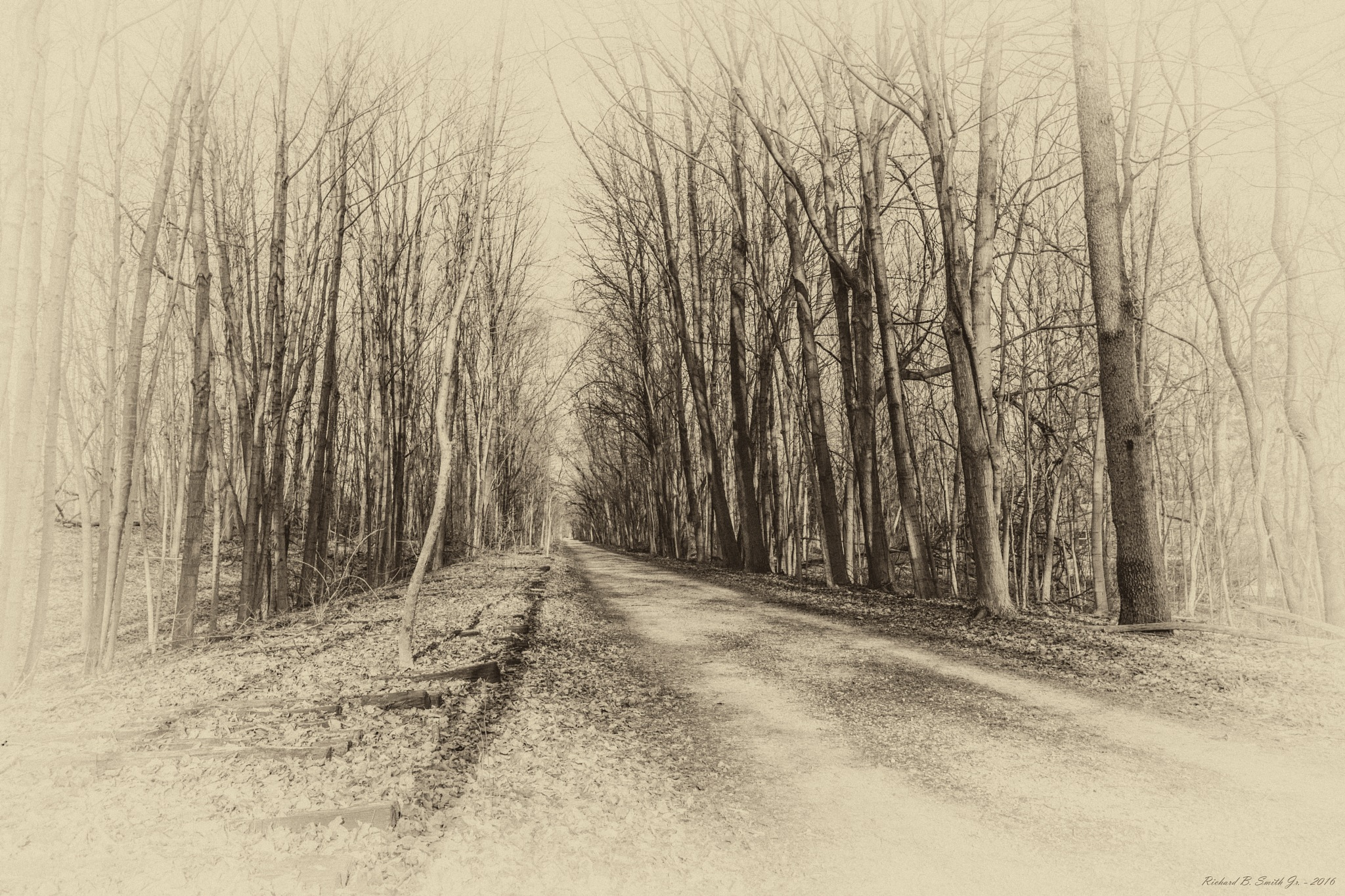 Rails to Trails ~ Zionsville, Indiana by Richard B.  Smith Jr.