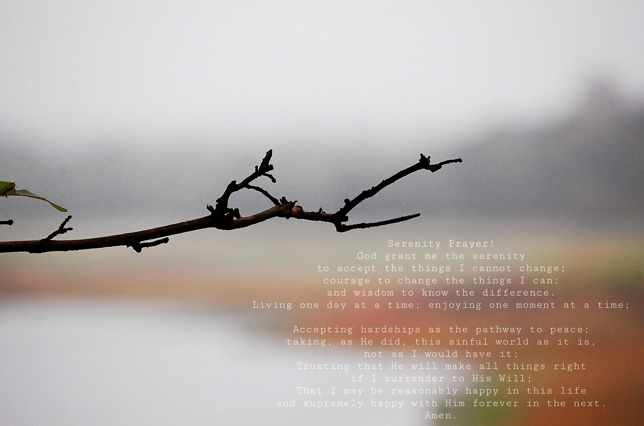 Serenity Prayer  by michaelstonephotography