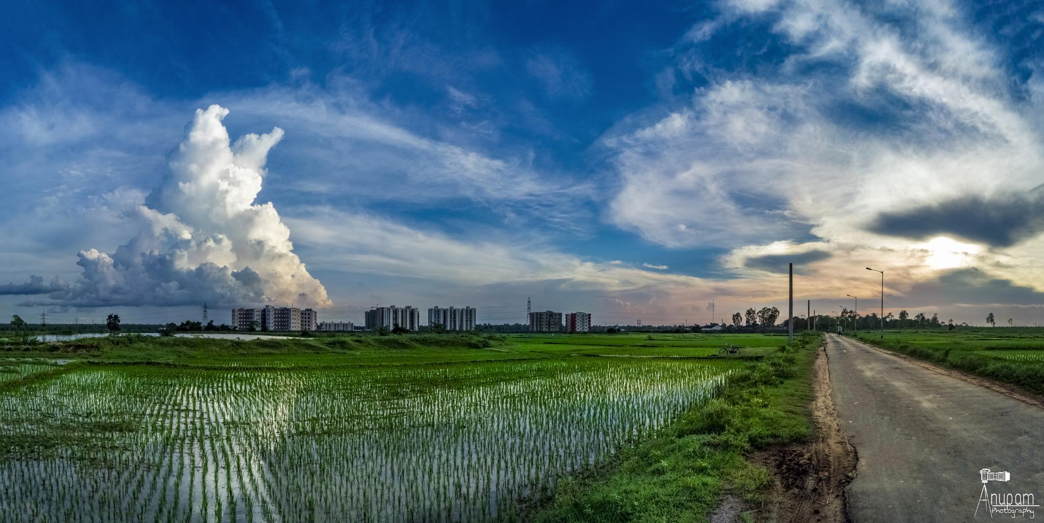 rural landscape by Anupam Banerjee