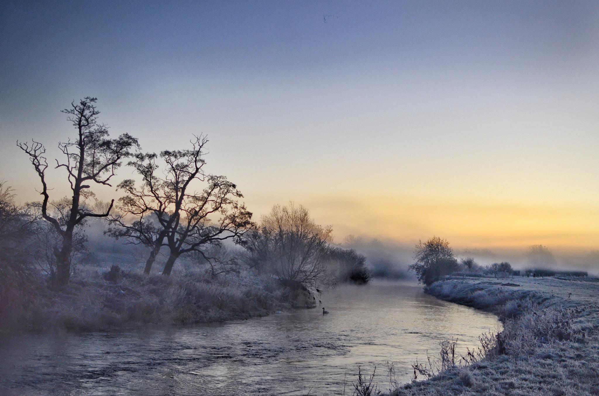 frosty morning by Nicholas Sharpe