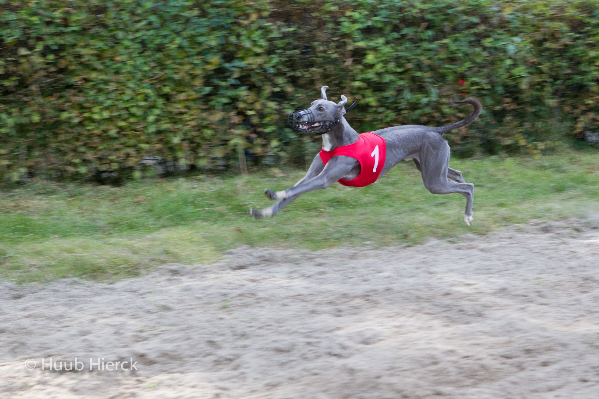 jump the finish line by Angus