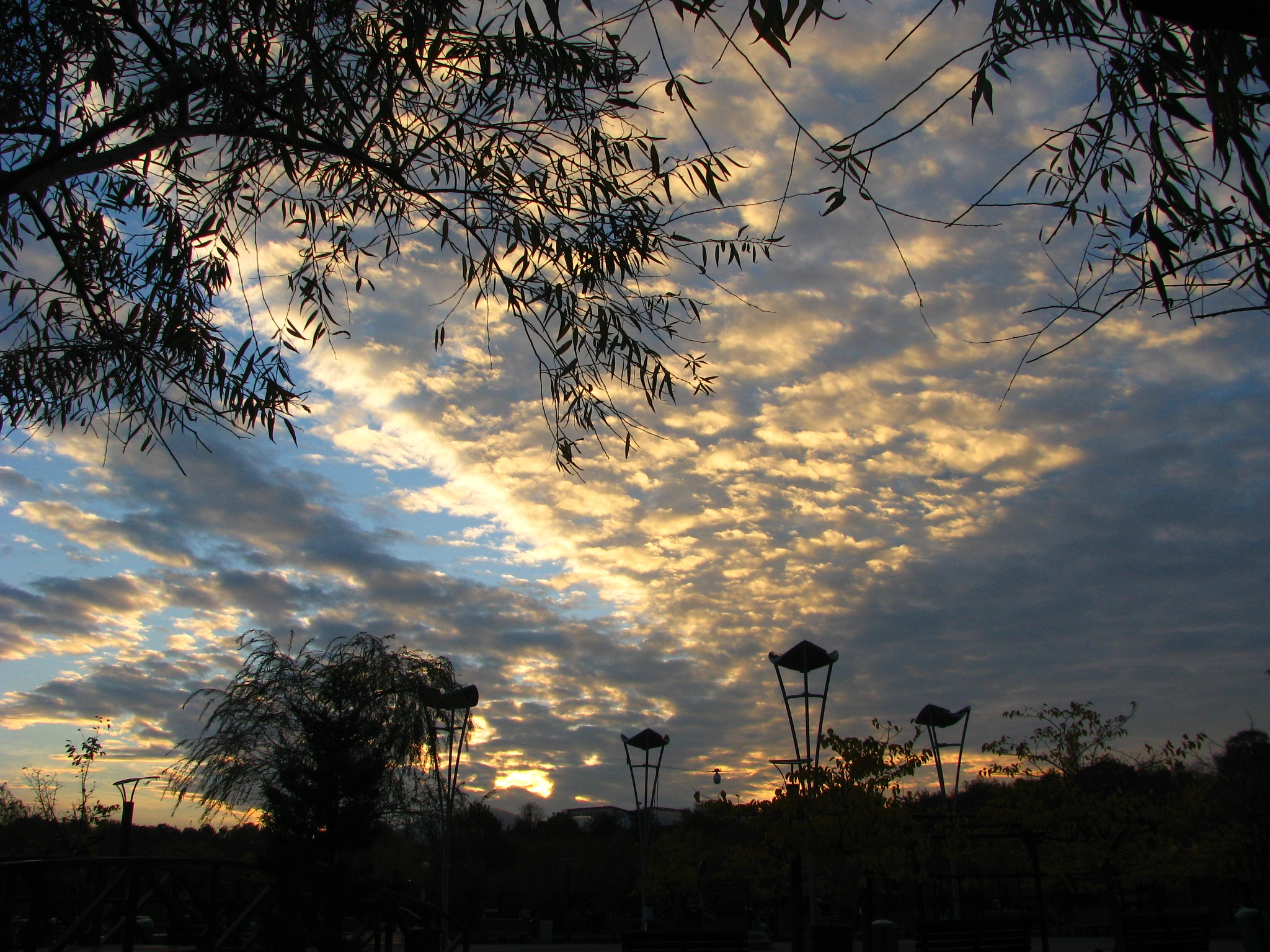 Altocumulus clpuds at the sunset, October 29, 2016 by Elena Maria