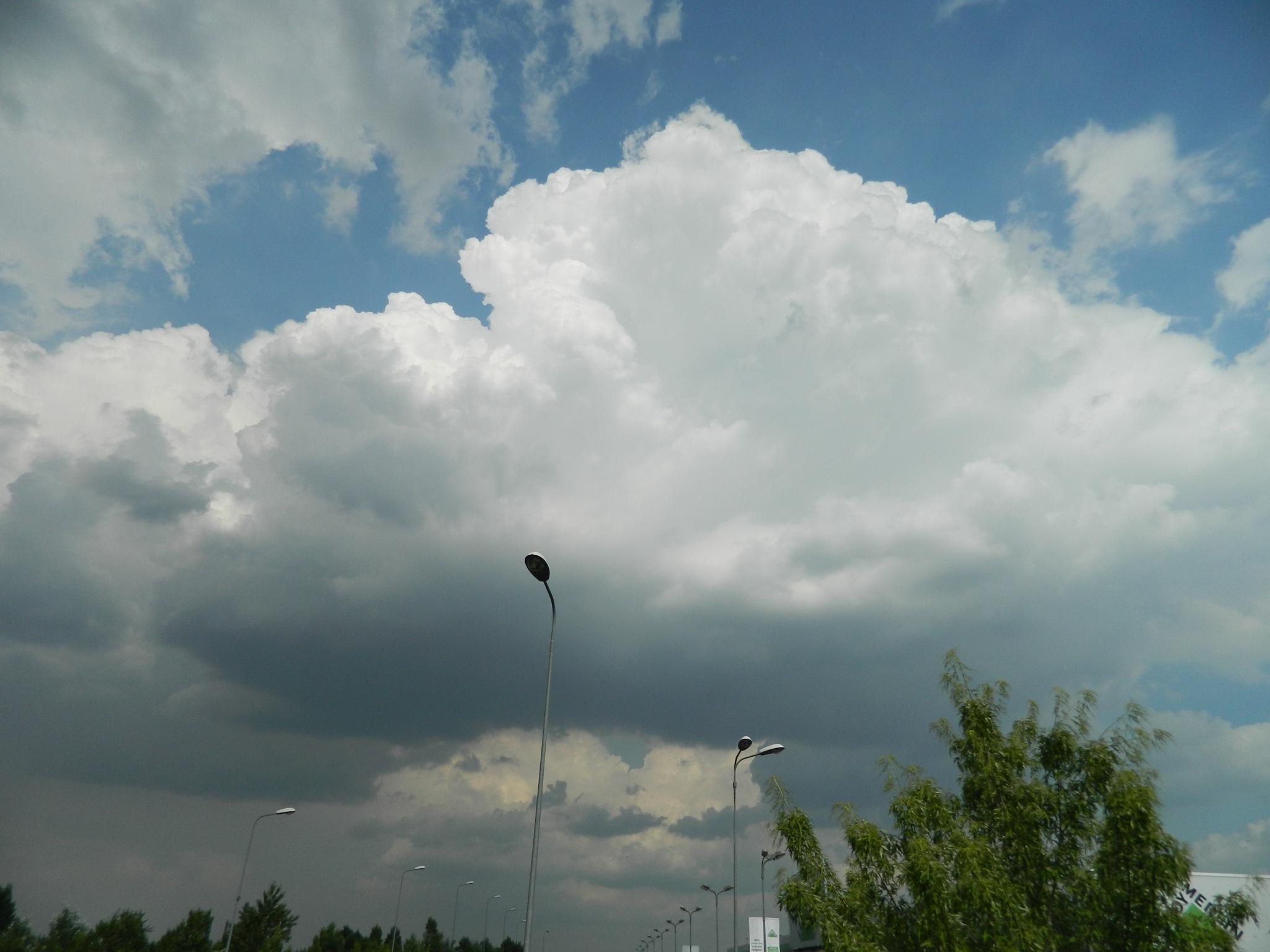 Convective cumulus clouds. by Elena Maria
