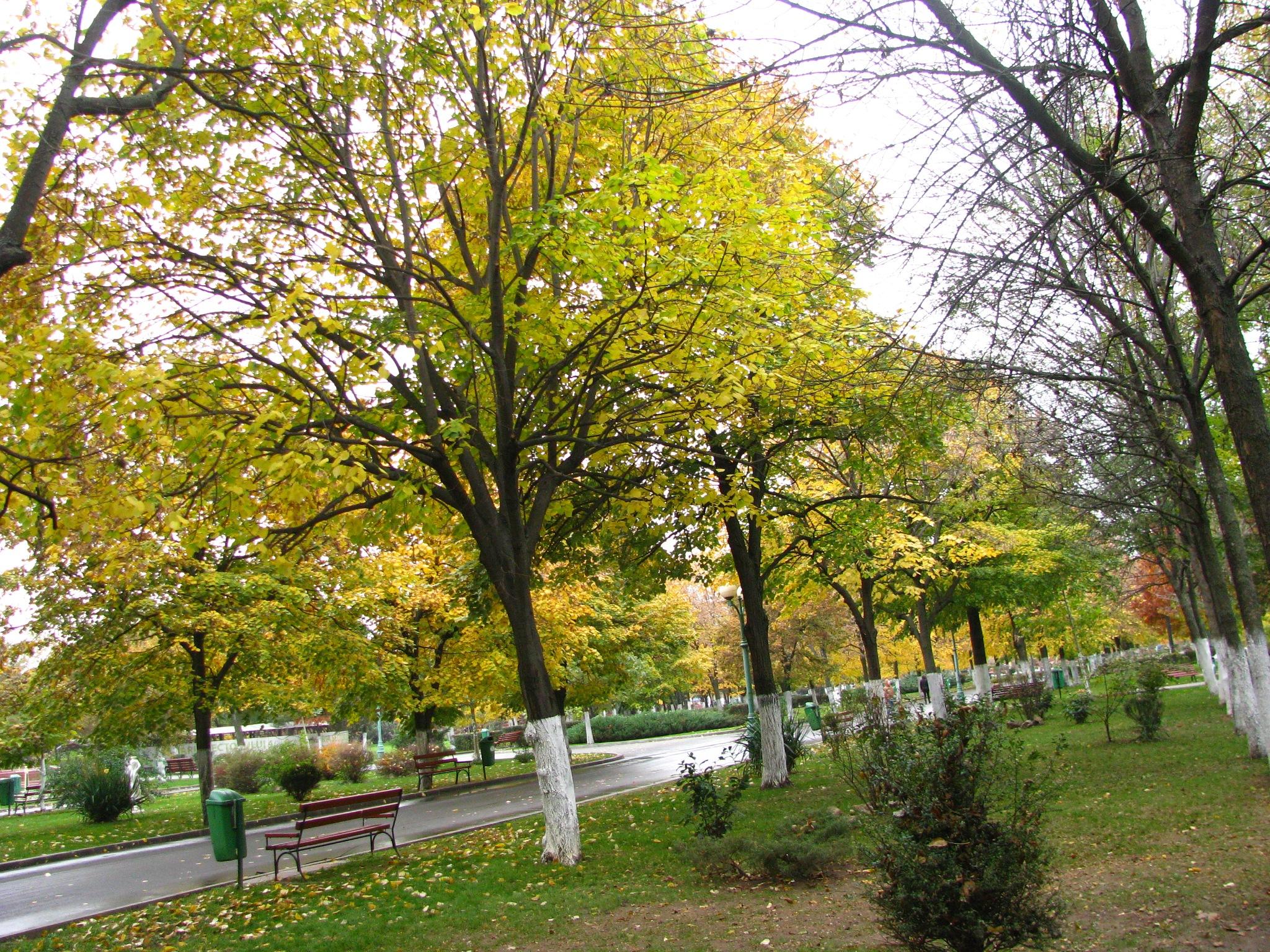 Beautiful autumn time ! by Elena Maria