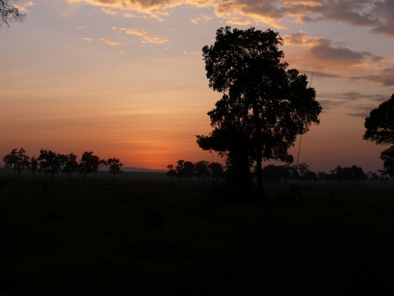 Sunrise in the Masai Mara ! by Mara1