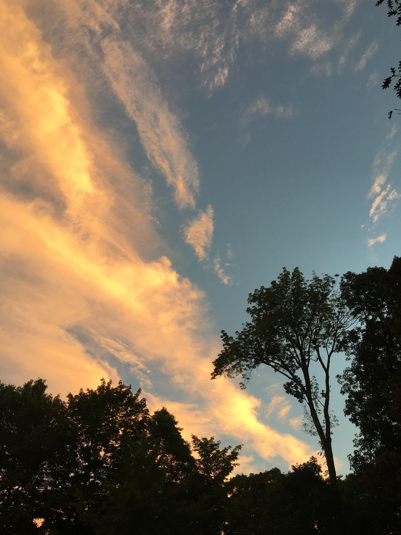 Cowboy sky by DonnaFuller