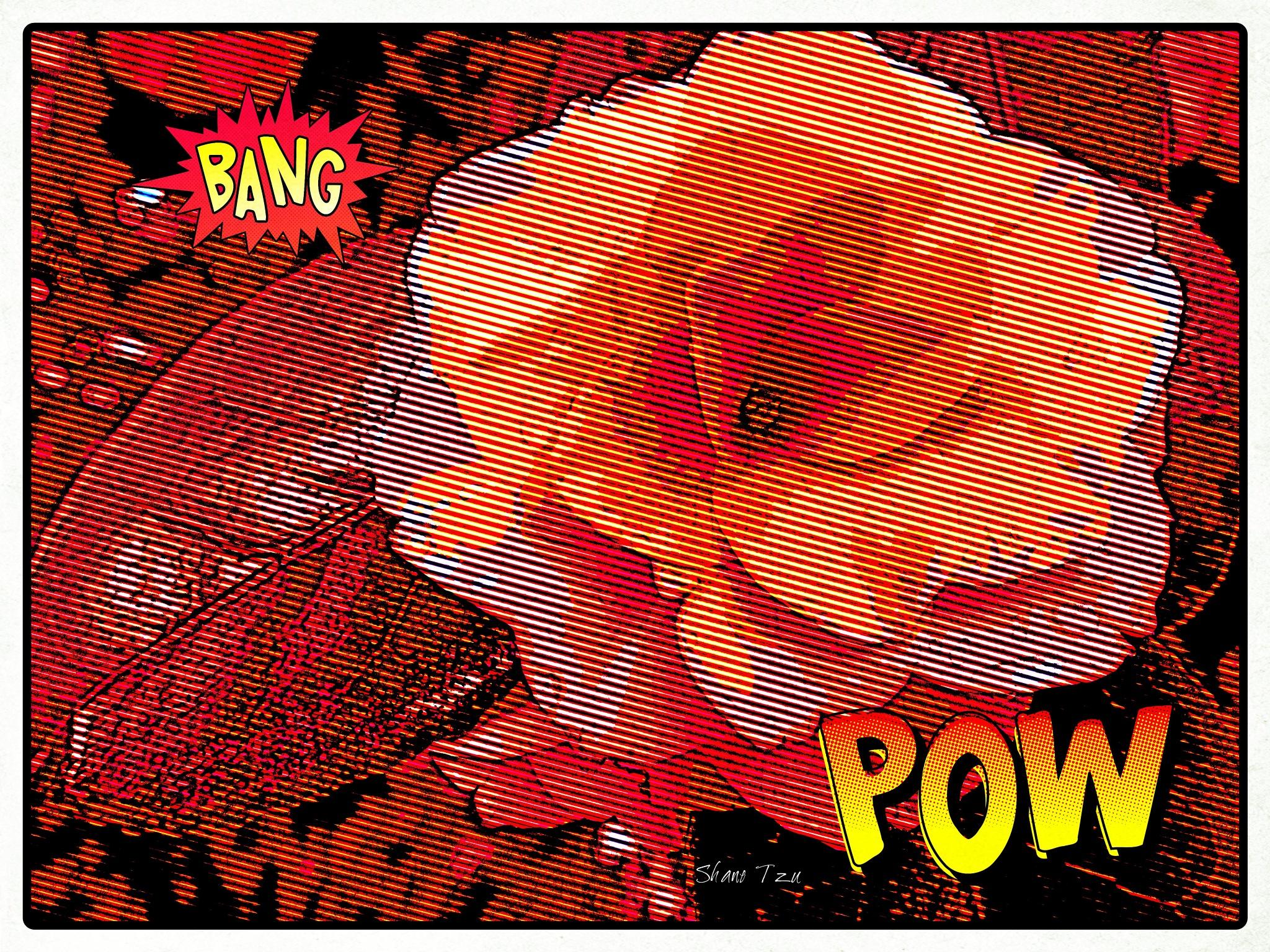 Flower Comics by shanetzu