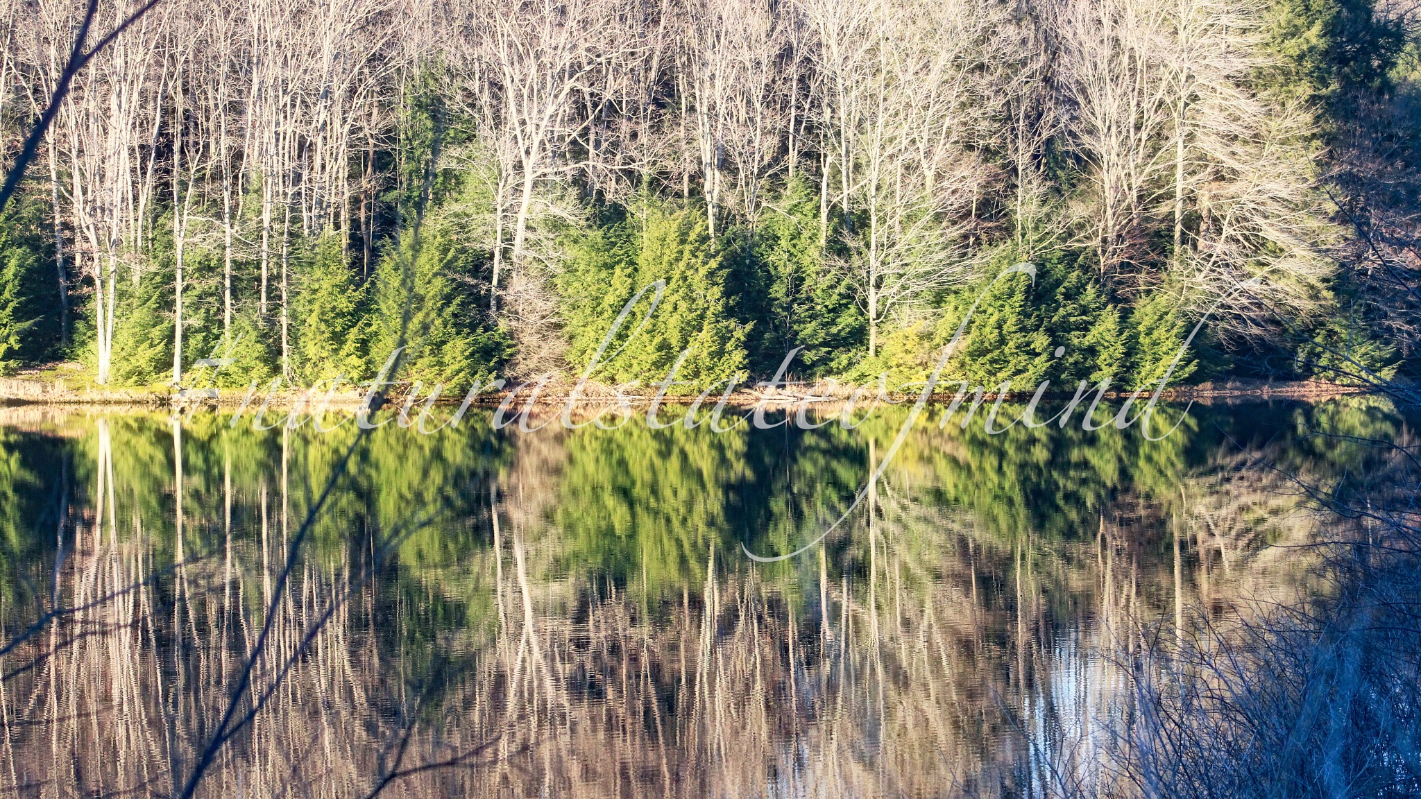 November Reflections by Natural State of Mind
