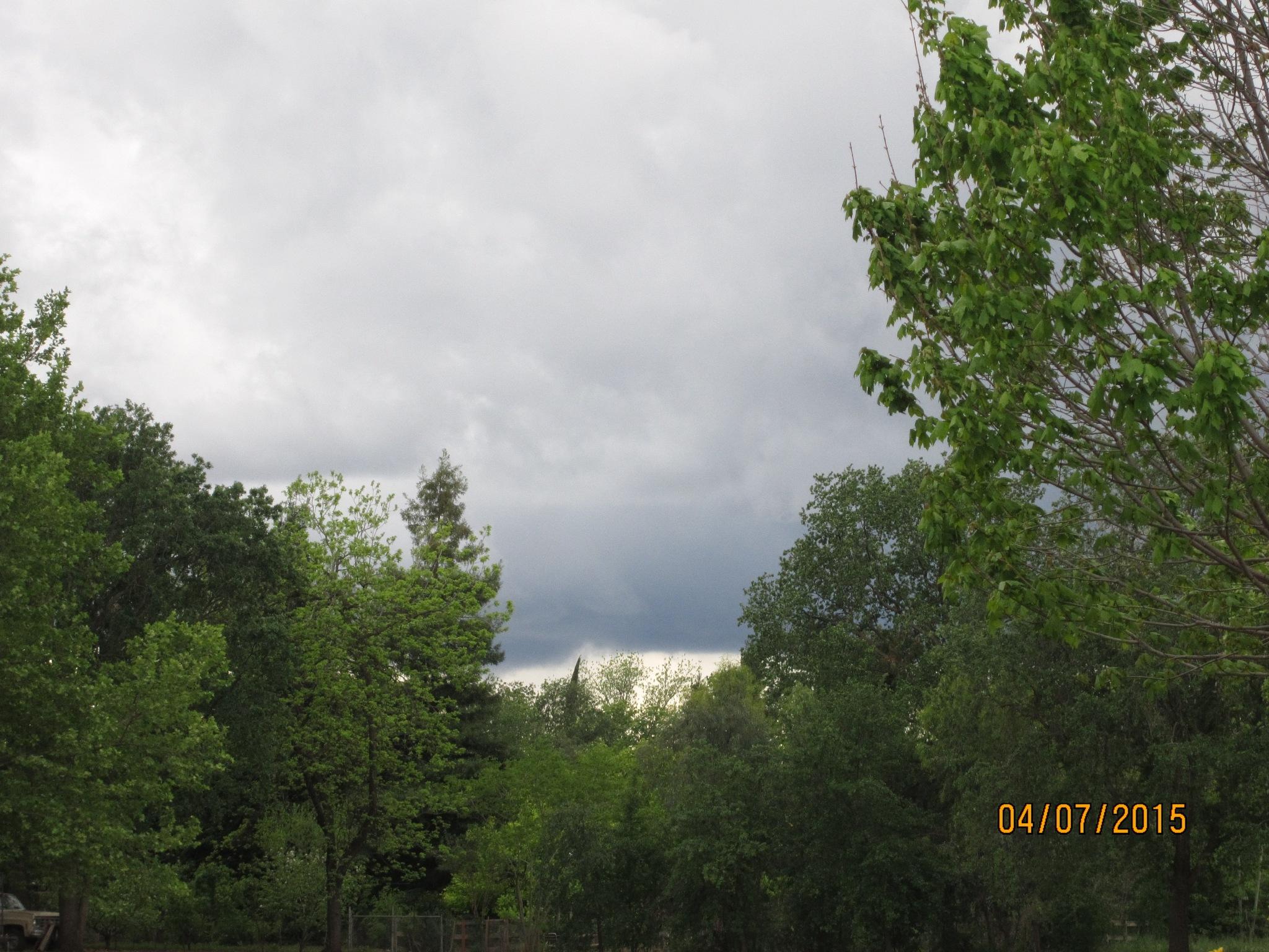 Stormy Sky   by Toni Netherton