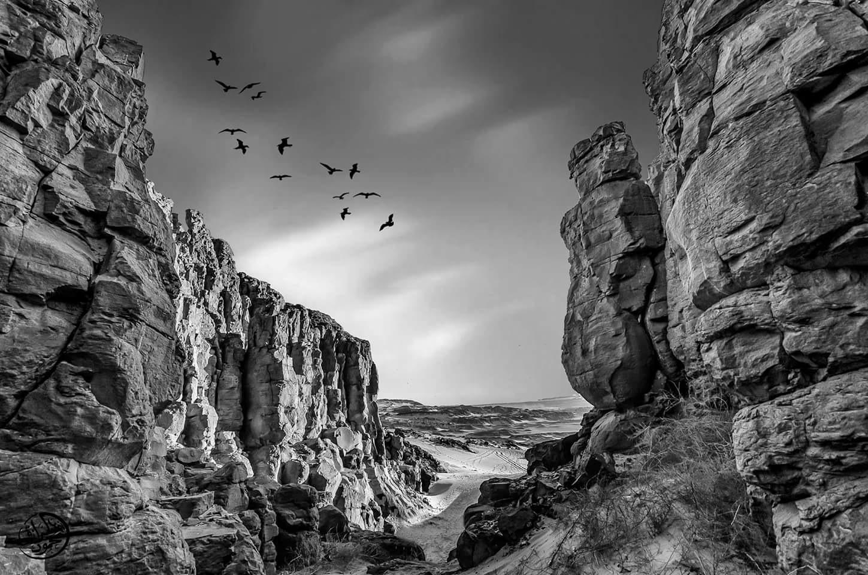 كاينوز ماىسيل by Mahmoud Abdelrazek