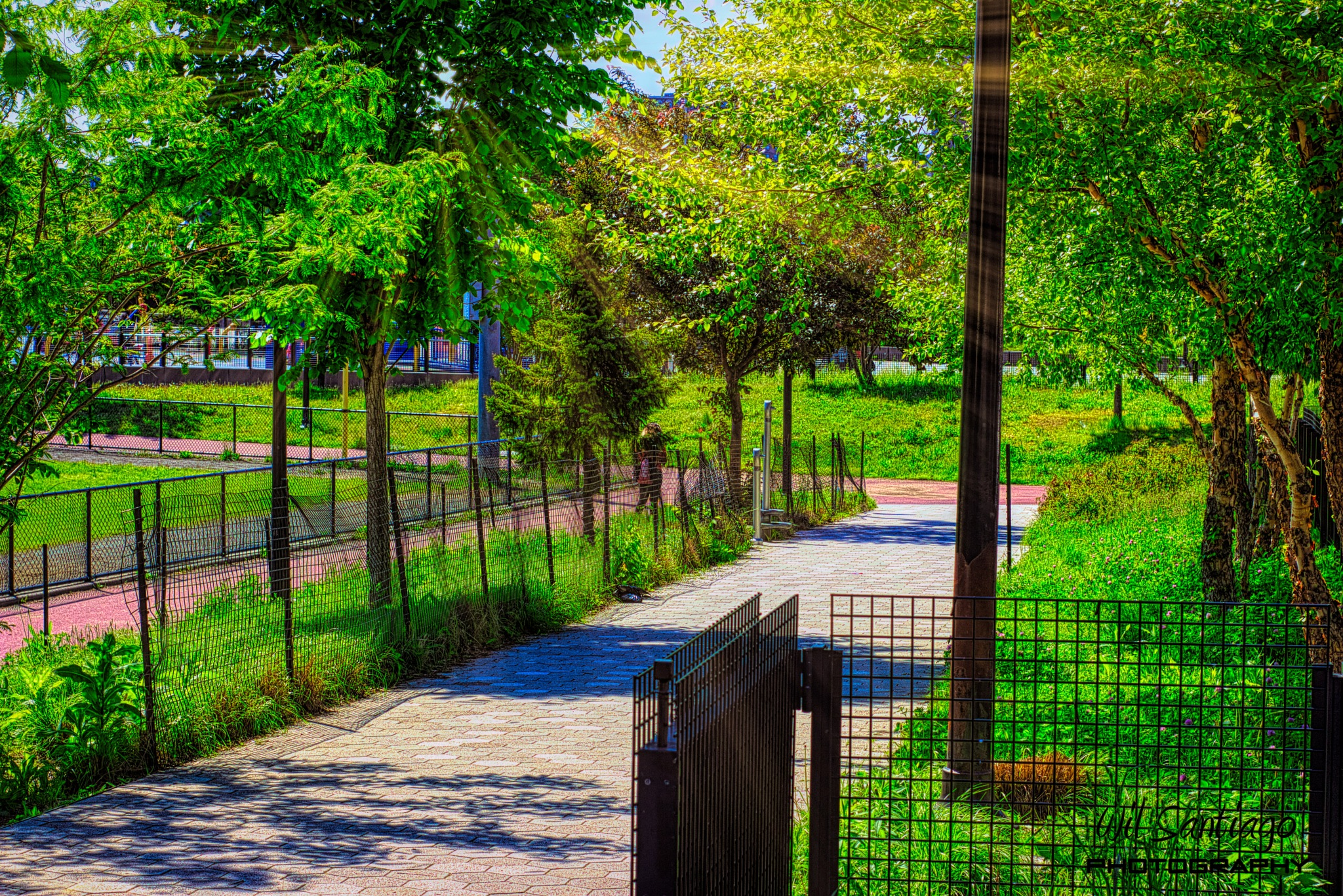 Pathway to Yankee Stadium Community Park by WilSant