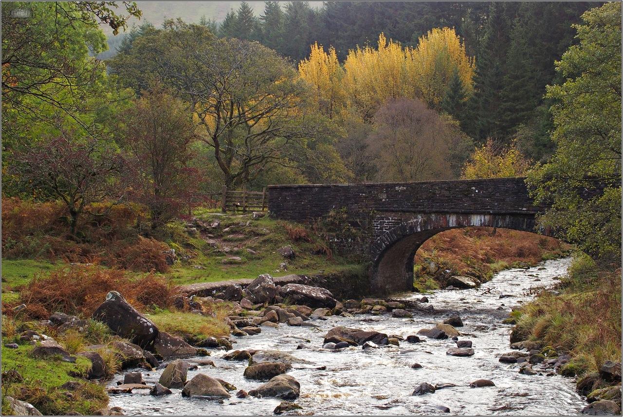 The bridge at Blaen Y Glyn by .