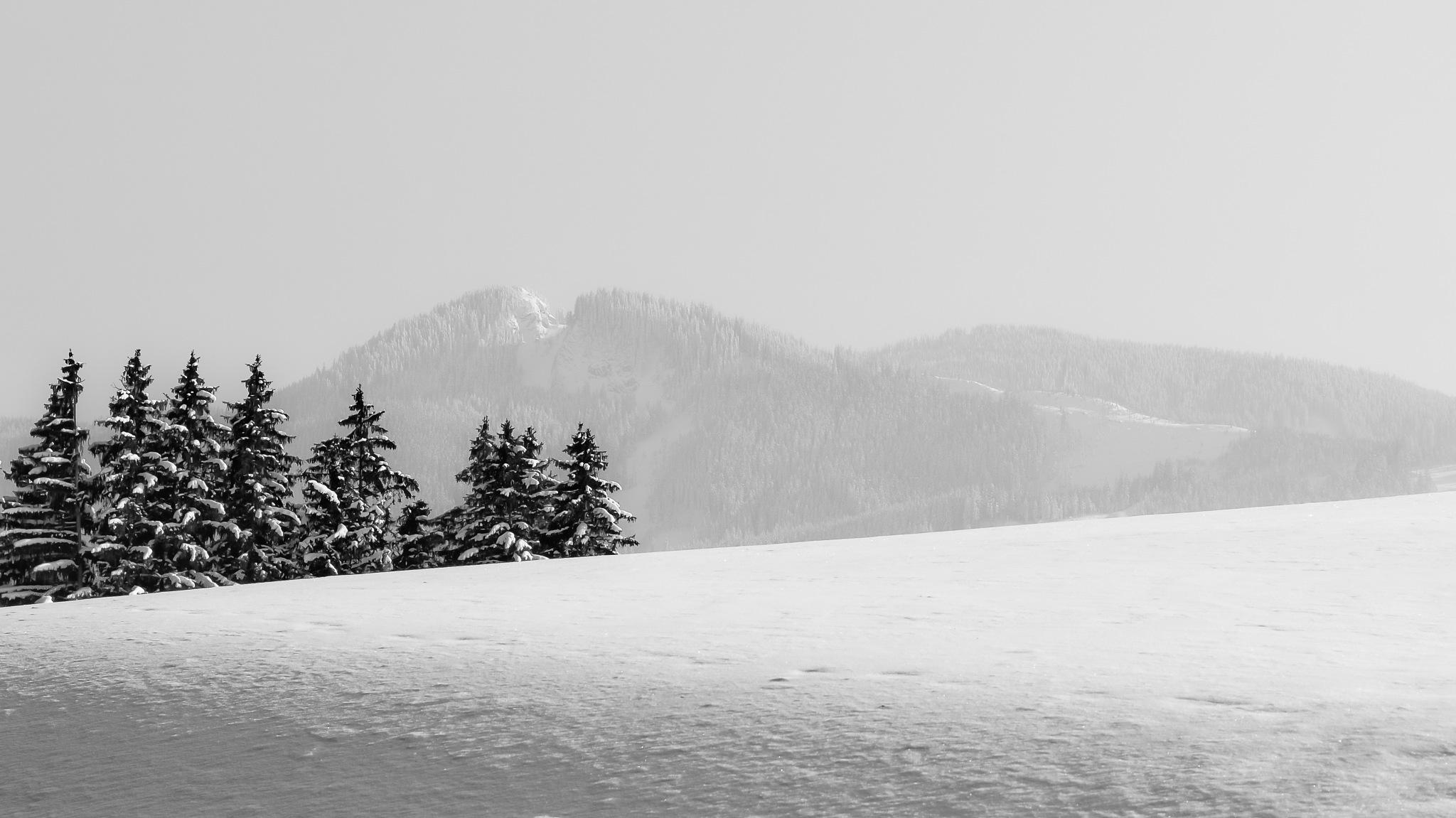 Winter in the Alpen by Safta Ciprian