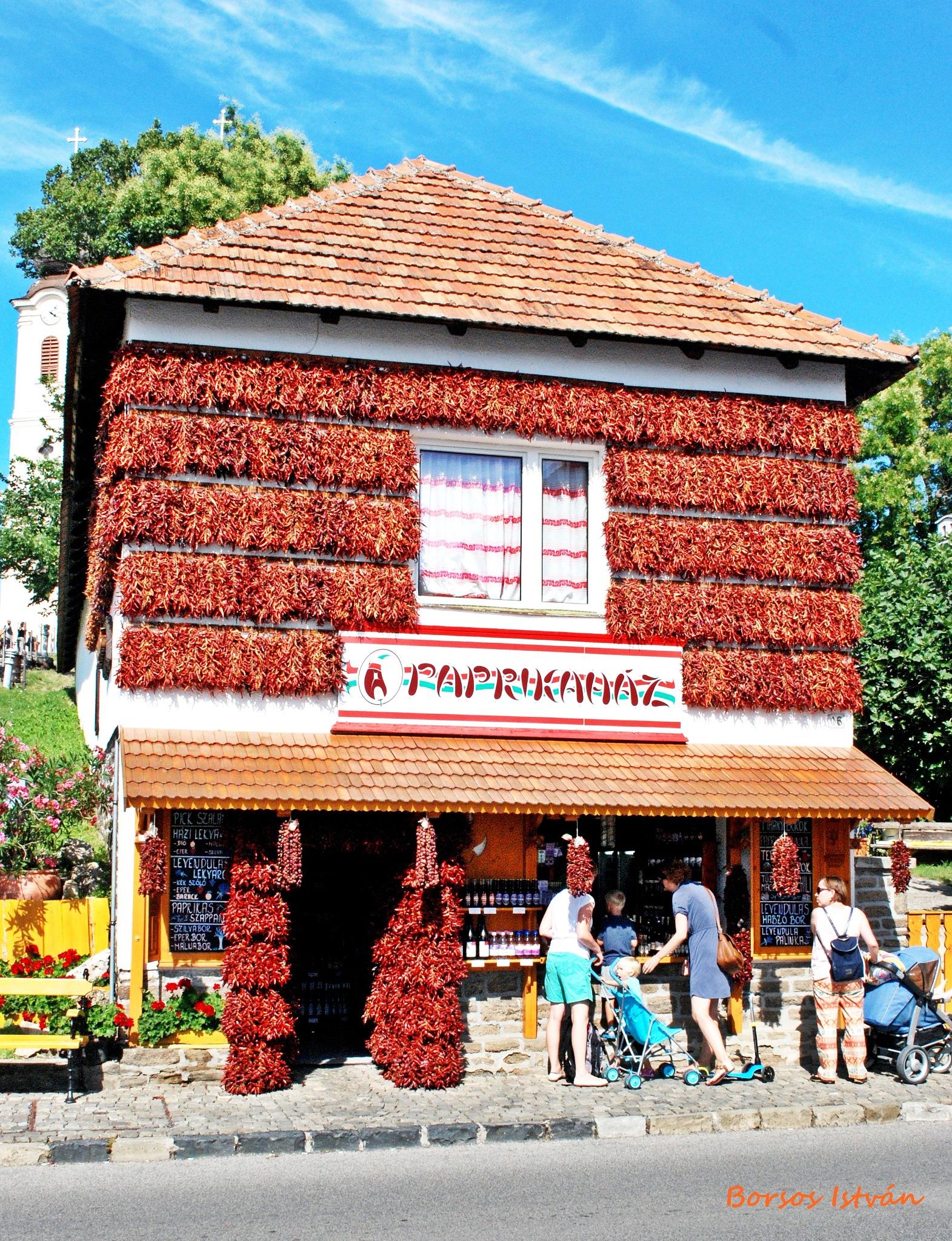 The pepper house by Borsos István