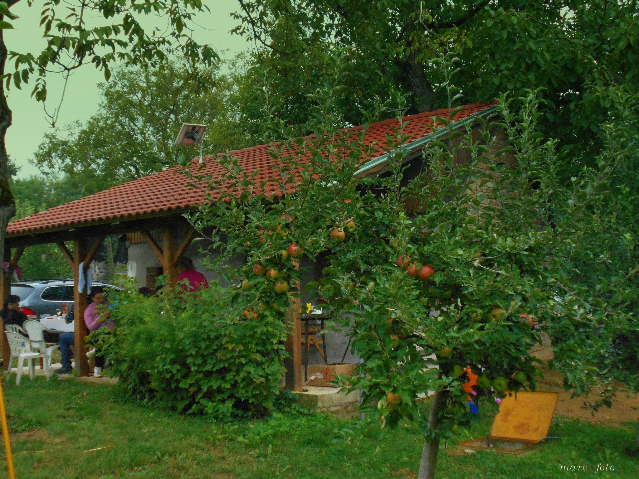 Kuće za odmor u vinogradima by Marica Svigir