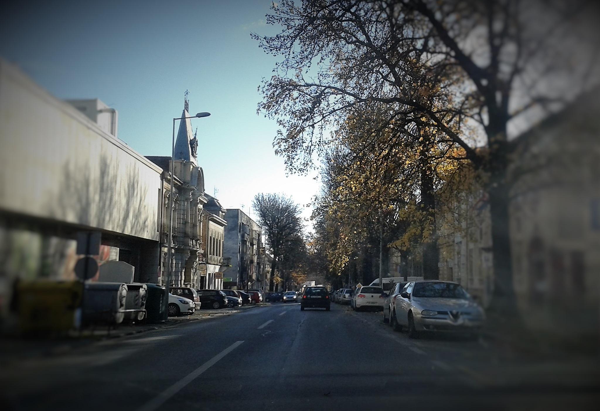 Panorama ulice u gradu Bjelovaru, Croatia by Mare