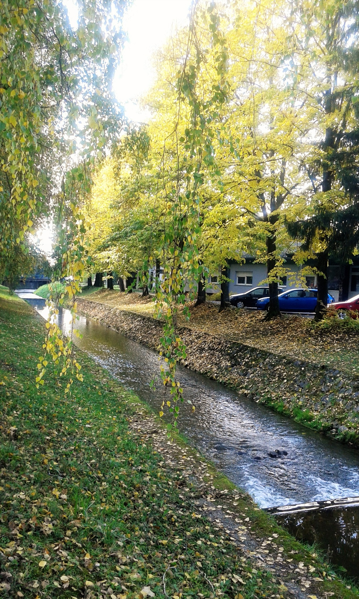 Potok uz Termal ... Daruvarske Toplice ...Croatia by Mary13
