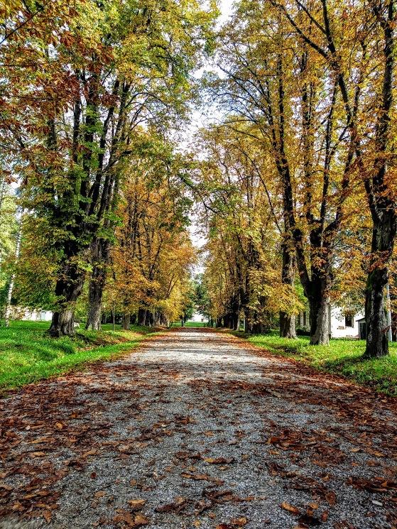 Jesen u parku by Mary13