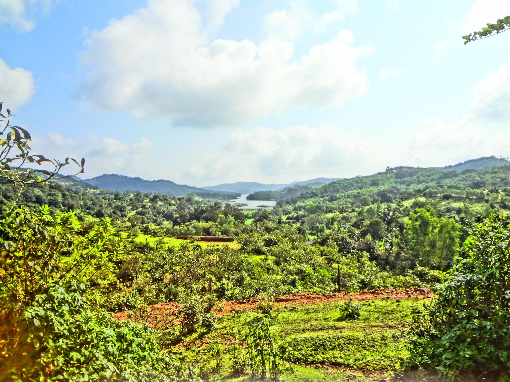 Landscape by pjagadish