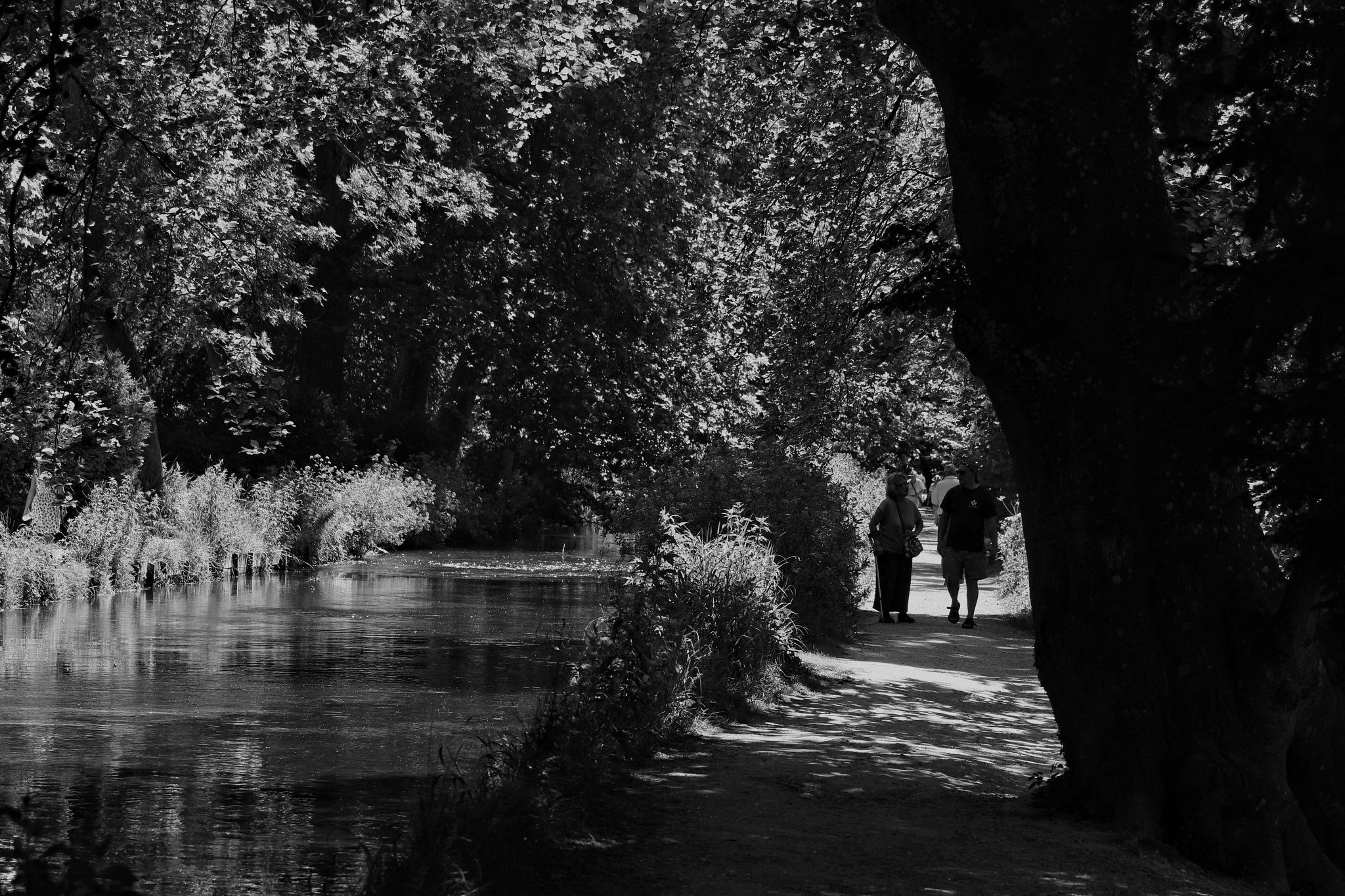 Riverbank by Rich66