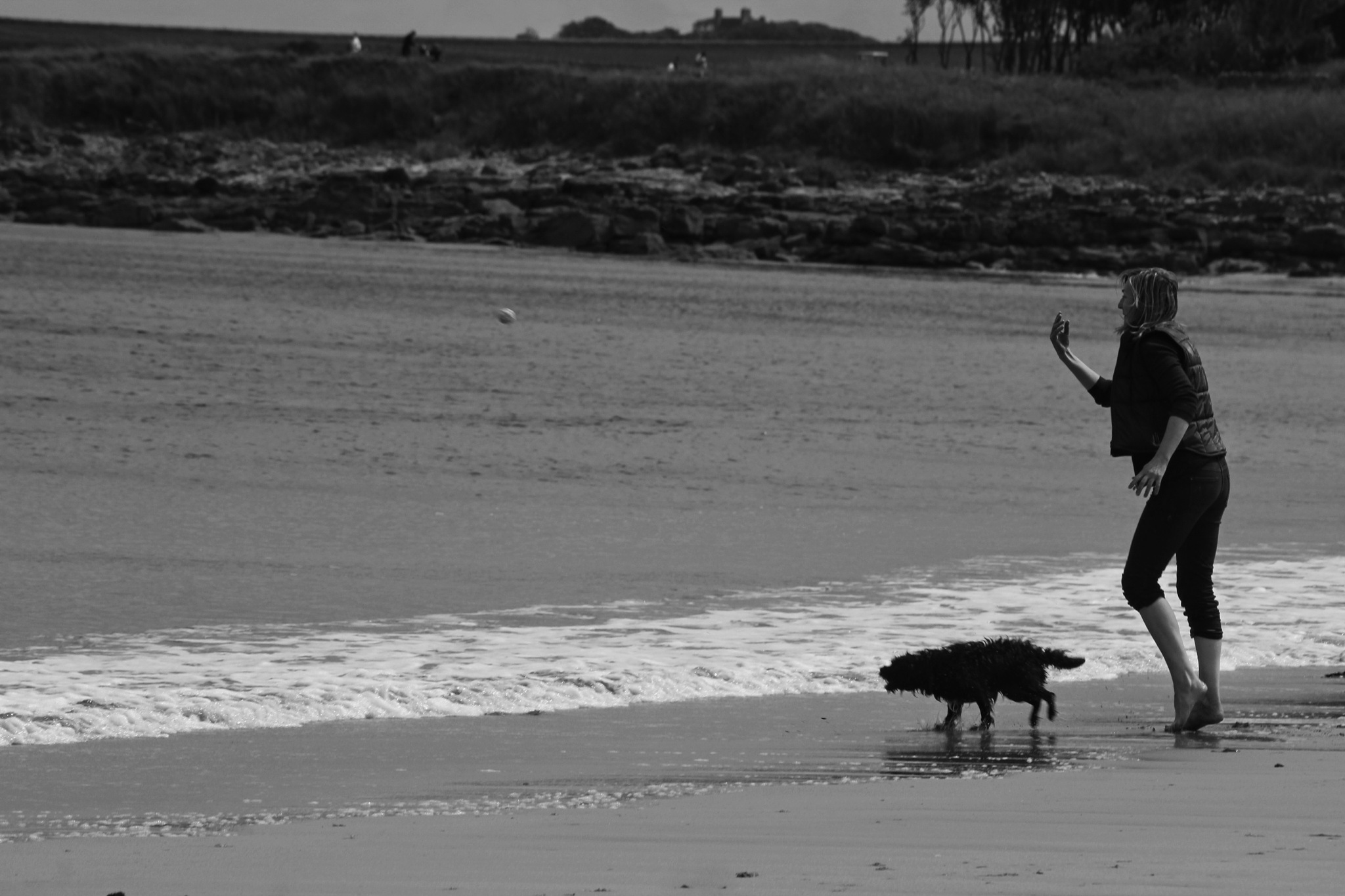 Dog, girl and beach by Rich66