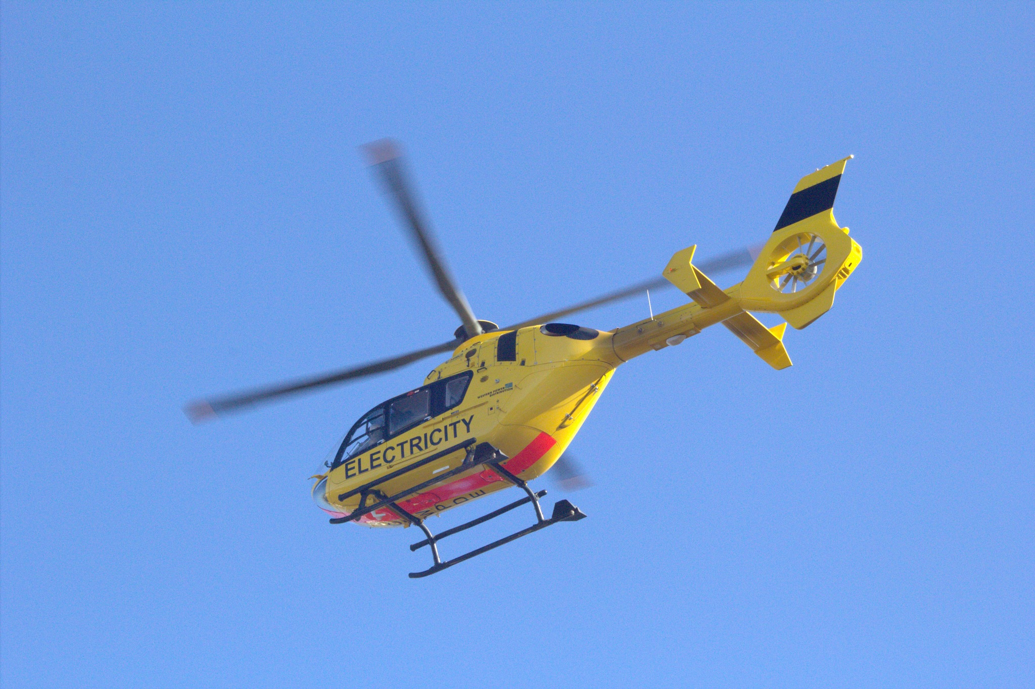 Chopper by Rich66